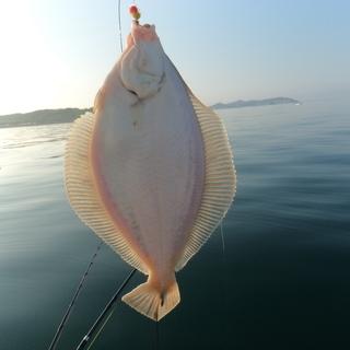 初心者のための 【船釣り】 個人指導いたします。
