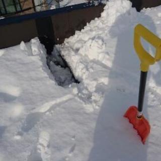屋根雪下ろし 、除雪 - 札幌市