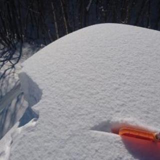 屋根雪下ろし 、除雪 - 地元のお店