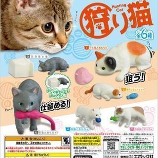 即購入ok ガチャガチャの狩り猫