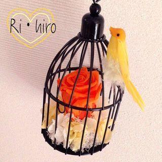 (62)幸せの鳥かごアレンジ♪