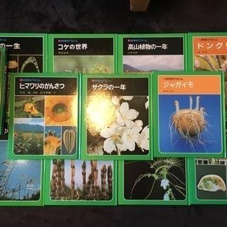 化学のアルバム(植物)
