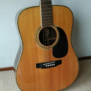アコースティックギター morris w-35