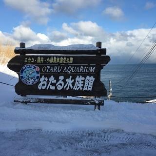 東京開催 北海道民会【北海道出身者、住んだことのある方、大好きな方】 - 千代田区