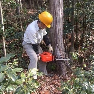 造園 設計 施工 庭木剪定 立ち木伐採 草刈り