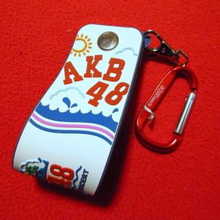 AKB48  東京ドーム 2014 タオルホルダー