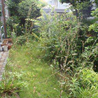 空き家 空き地 お庭 草刈り 管理でお困りではありませんか? 松...