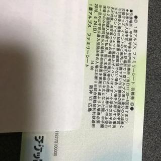 6月24日(日)阪神vs広島  1塁アルプス ファミリーシート引換券