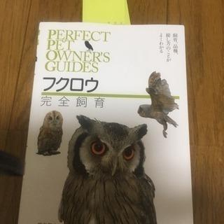 フクロウ完全飼育 新品
