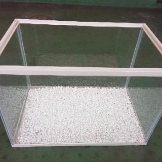 金魚 水槽 白石付