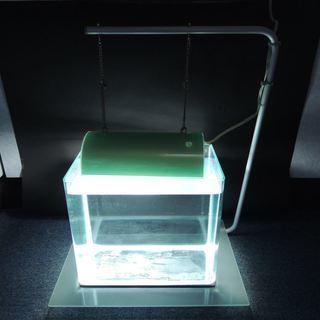 コトブキ 専用水槽台+ライト+おまけ水槽 廃盤品