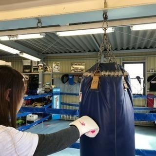 白井市・印西市内で唯一のボクシング&キックボクシングジムです。