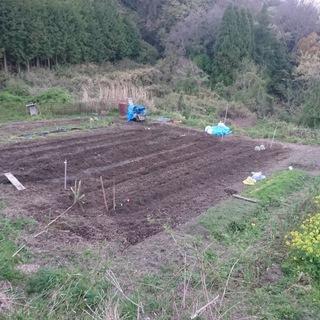 家庭菜園メンバー募集(畑シェア、場所:生駒)