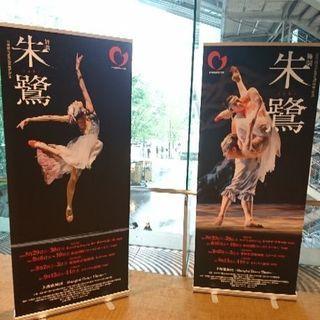 3月6日、3月8日、展示会でダンスやりたい人を募集
