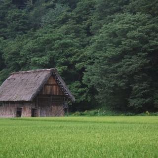 使わない田んぼ・畑などの農地、住まなくなる実家の処分に困ったらお...