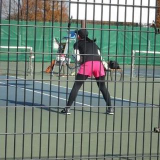 テニスプライベートレッスン ヒッティング サークルコーチ