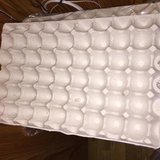 卵パック 紙卵パック 紙パック