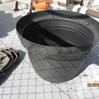 中古黒色プラスチック植木鉢もらってください