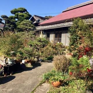 グリーンウェイ英会話スクールのご案内です。岡山県玉野市の古民家で、...