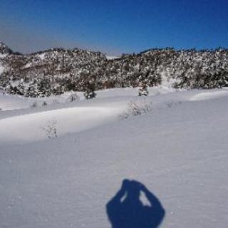 スキーやってる方いませんか~