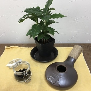 コーヒー豆の焙煎体験教室