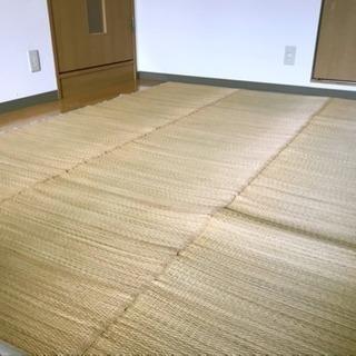 無印良品 い草マット - 京都市