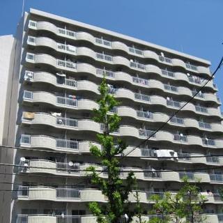 【🌟今なら空いてます🌟港区のフリーレント付ファミリー向けマンション...