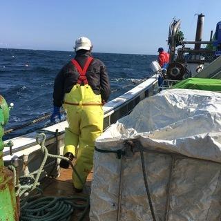 漁業・ホタテ養殖の船上作業員