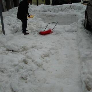 除雪 雪降ろし 承っております。 札幌市 便利屋タクミ − 北海道