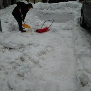 除雪 雪降ろし 承っております。 札幌市 便利屋タクミ - 地元のお店