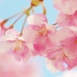 ☆7月ダンス舞台出演者募集中☆3月中まで!