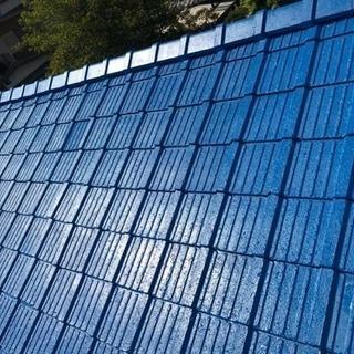 屋根塗装 外壁塗装店(所沢市 狭山市 入間市 飯能市 川越市 さい...