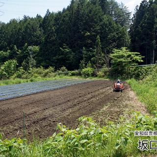 愛知県豊根村 坂口農園主催 春のワーキングホリデー