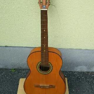 アコースティックギター 【プロフィール必読】‼️