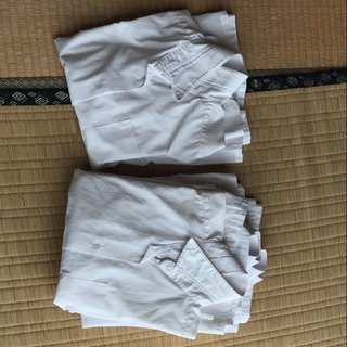 女子スクールシャツ 155&160センチ 6枚セット