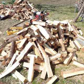 薪ストーブ用の薪 全て桜の未乾燥