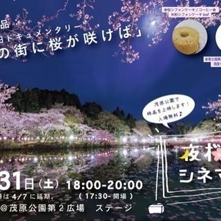 2018/3/31🌸夜桜シネマ@茂原公園