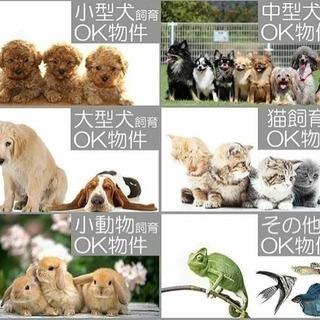 ペット専門賃貸マンション