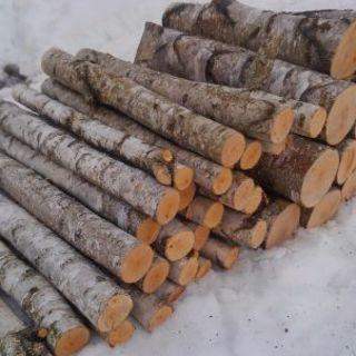 薪用の原木