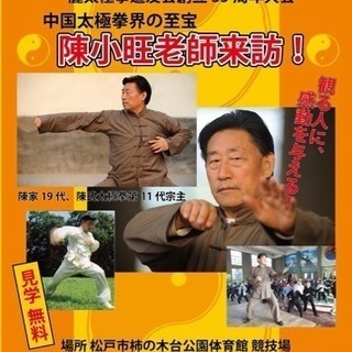 伝統陳式太極拳