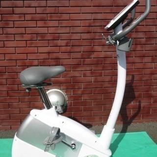 3991 自家発電機 ALINCO アルインコ エコバイク AFB...