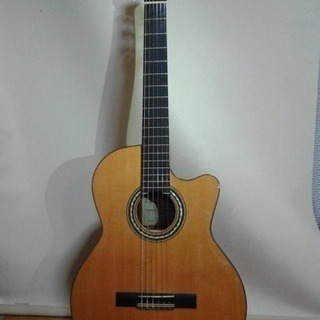 Orpheus Valley Guitars F65CW
