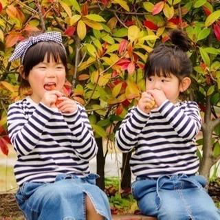写真館「Miratoru-みらとる-」 − 島根県