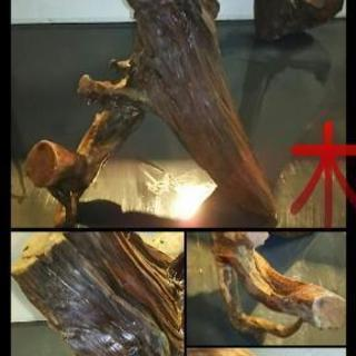 流木【全国発送可】 検) 龍の置物 木製オブジェ 和風置物 床の...