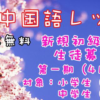 子供中国語レッスン(新規初級クラス 生徒募集中)入学金無料!!!