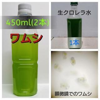 【生き餌】ワムシ450ml(2本)+生クロレラ水500ml(1本)