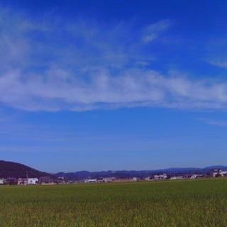 トイカメラVivitar vivicam8027 − 岡山県