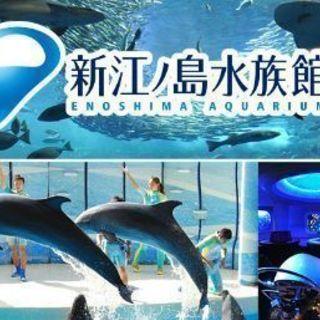 複数可☆新江ノ島水族館