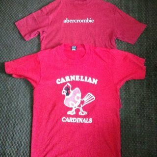 Tシャツ abercrombie cardinals 二枚セット...