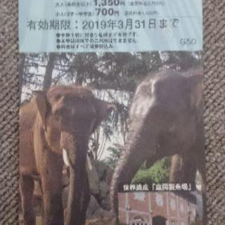 群馬サファリパーク50%割引チケット